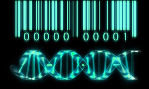 US Supreme Court Rules on DNA Patents